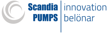 Scandia Pumps
